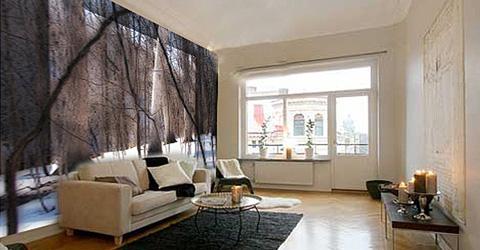 Landelijk modern woonkamer